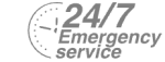 24/7 Emergency Service Pest Control in Kilburn, Queens Park, West Hampstead, NW6. Call Now! 020 8166 9746